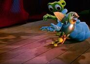 Parrot taking the snail