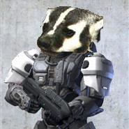File:Badger helmet.jpg