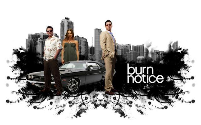 File:Burn-notice-mike-sam-fi.jpeg