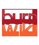 File:Burnwiki.png