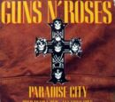 Paradise City (song)