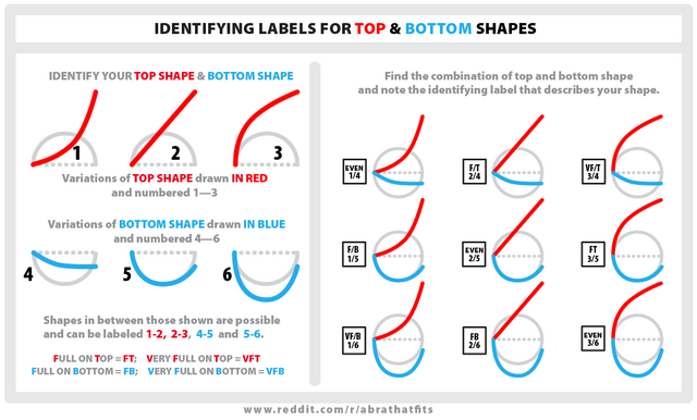 File:Breast shape guide.png