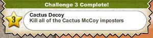 Cactus Decoy