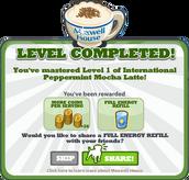 Level1IPML