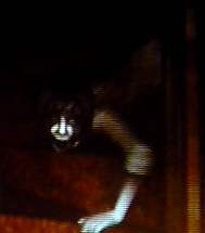 File:The Calling - Bath Ghost.png