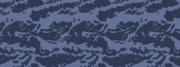 Weapon camo menu blue tiger