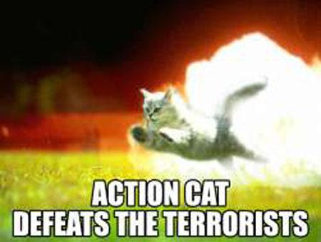 File:Action Cat Terrorists.jpg