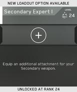 Secondary Expert I Unlock Card IW