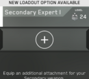 Secondary Expert