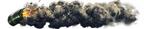 Iw5 cardtitle smoke grenade