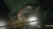 Shark AW