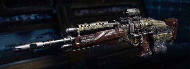 File:Sheiva Gunsmith model Etching Camouflage BO3.jpg