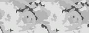 Weapon camo menu arctic.png