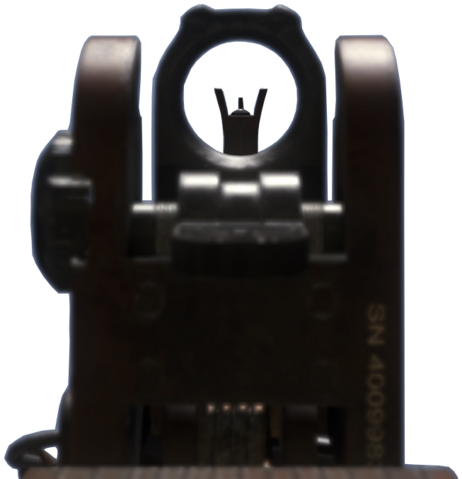 File:MSBS iron sights CoDG.png