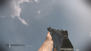 AK-12 Silenced CoDG