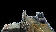 M60 Gold BO