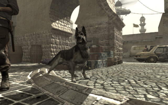 File:Dog in Coup.png