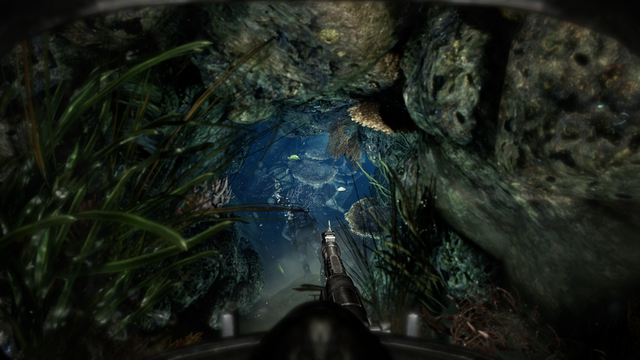 File:Into The Deep 4K CoDG.png
