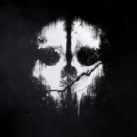 File:Logan Walker skull mask pattern CoDG.png