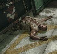 Dead Sergei