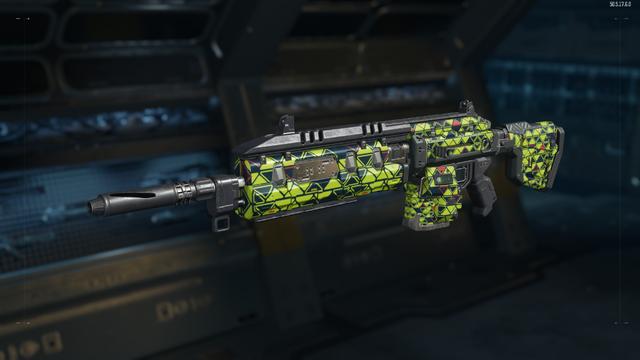 File:Man-O-War Gunsmith Model Integer Camouflage BO3.png