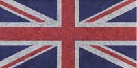 UK Punk Camouflage