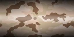 File:Menu mp weapons camo sahara.png