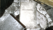 Richtofen Book BO