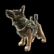 Riley Xbox Live avatar CODG