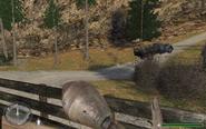 Trtruck2hill