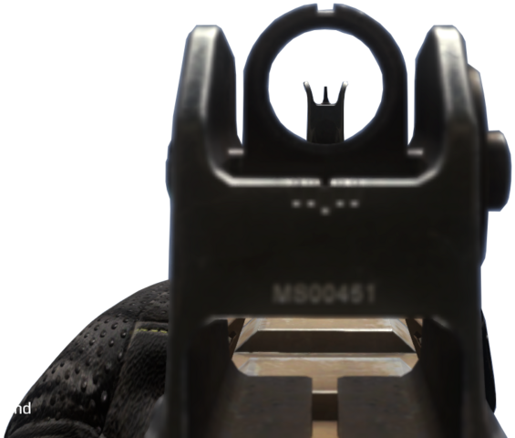 File:Remington R5 iron sights CoDG.png