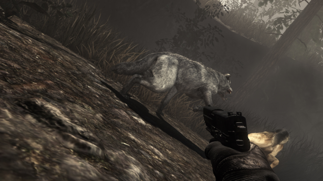 File:Wolf fighting with Riley No Man's Land CoDG.png