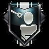 Survivor Medal BOII