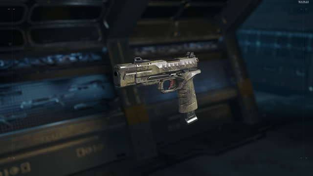 File:RK5 Gunsmith Model Stealth Camouflage BO3.png