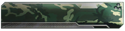 File:Camouflage Green 2 Calling Card BOII.png