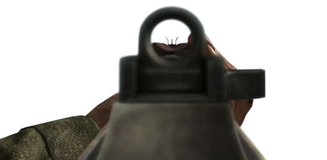 File:M1A1 Carbine Iron Sights WaW.png