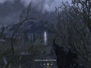 Hiding in bushes from enemy heli Hunted CoD4