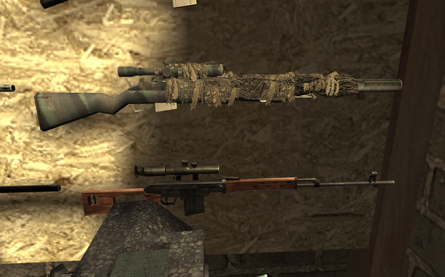 File:Dragunov and M21 ghillie FNG COD4.png