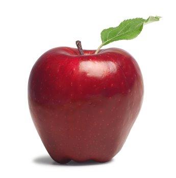 File:Tomatosaur apple.jpg