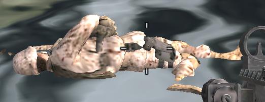File:Dead marine in water - --Heat--.png