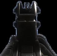 Ameli iron sights CoDG