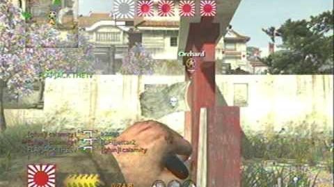 Call of Duty World at War Satchel Charge Montage