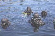 Navy SEALs (MJK)