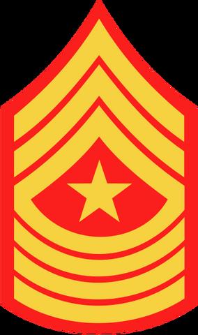 File:USMC-E10.png