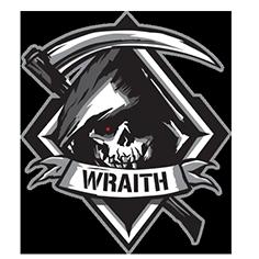 File:Wraith Emblem IW.png