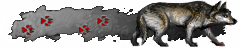 File:Iw5 cardtitle wolf.png