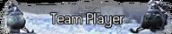 Team Player title MW2