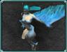 Blueskin Harpy