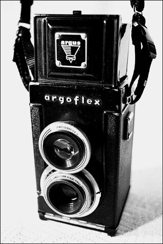 File:Argoflex.jpg