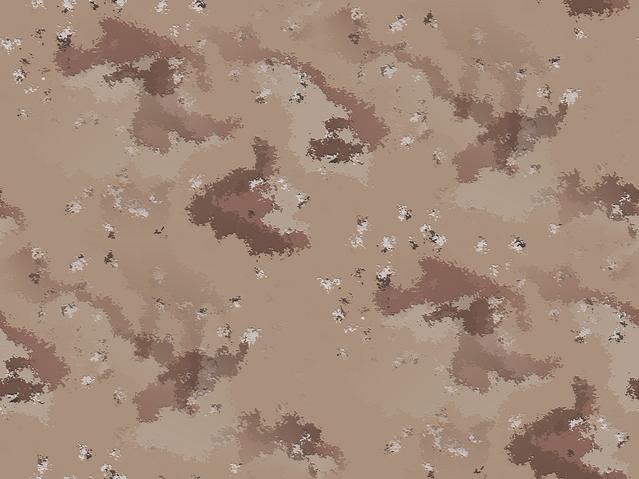 File:I.D.P.A.R.T. (Improved Disrupitve Pattern, Arid Terrain).png